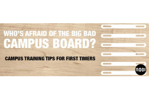 A Beginner's Guide To Campus Boarding