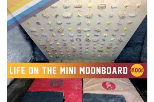 Life on the Mini Moonboard